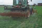 rotary harrows weed control erosion mechanical