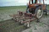 Maize weed-control rolling cultivators  mechanical
