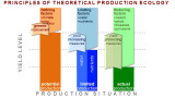 Principles of theoretical production ecology